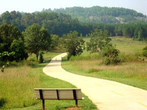 Enjoy the paved paths and the great scenery at Arabia Mountain.