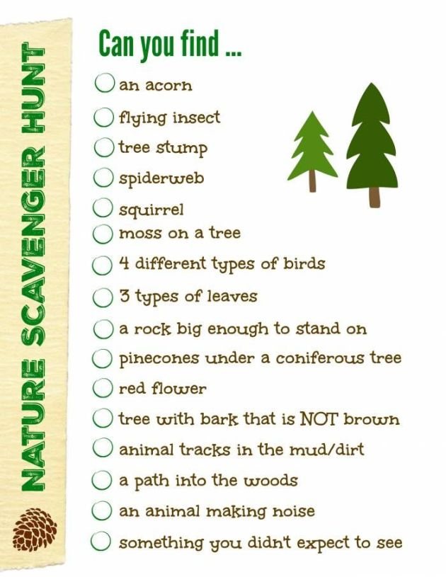 nature scavenger hunt (2)